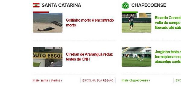 golfinho morto é encontrado morto G1 Santa Catarina ale koga
